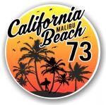California Malibu Beach 1973 Surfer Surfing Design Vinyl Car Sticker Decal  95x95mm